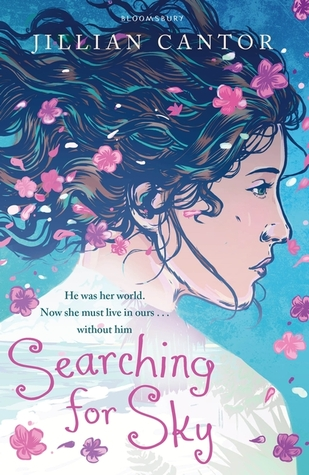 Contemporary YA Reviews #1: Searching for Sky by Jillian Cantor & The Minnow by Diana Sweeney