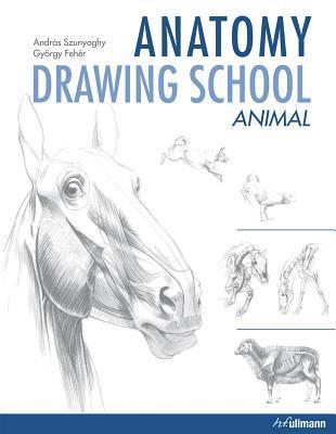 Anatomy Drawing School: Animal by András Szunyoghy ...