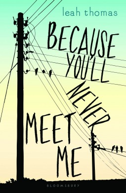 Book Review: Because You'll Never Meet Me