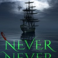 Single Sundays: Never Never by Brianna Shrum