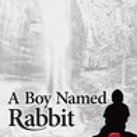 A Boy Named Rabbit by @MarciaMeara #Bookreview #Contemporary #Paranormal