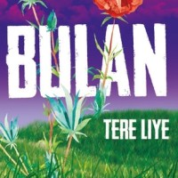 MY REVIEW ABOUT TERE LIYE - BULAN