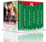 All He Wants for Christmas: a Holiday Anthology