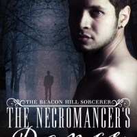 Review: The Necromancer's Dance (The Beacon Hill Sorcerer #1) by S.J. Himes #MM @WriterSJHimes