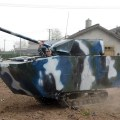 Hot shots photos of the day tulip fields bear cubs homemade tank