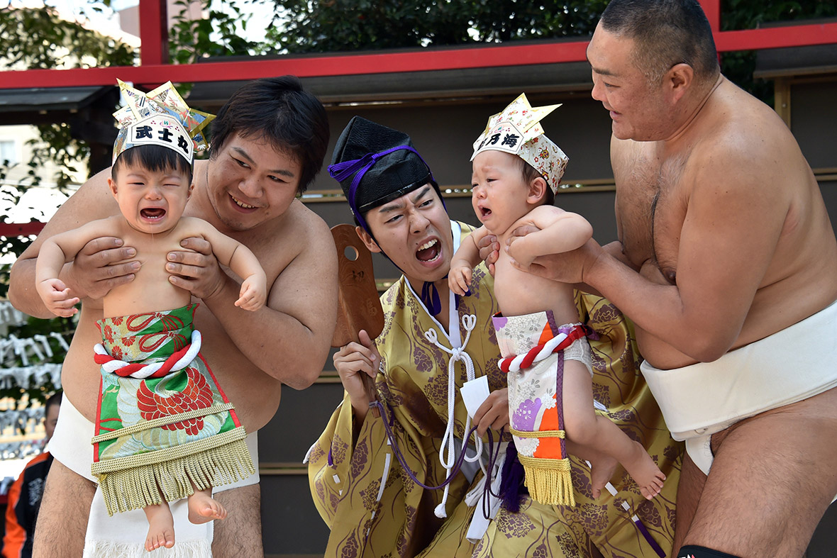 Hot Shots Photos Of The Day Oktoberfest Sumo Babies Ed