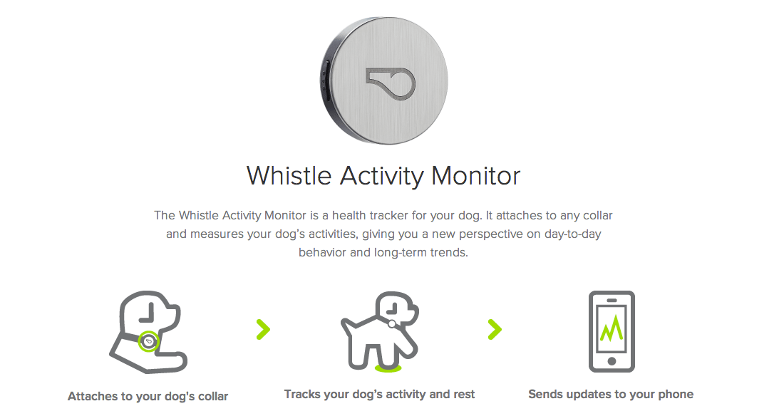 Apple to Sell Whistle Activity Monitor, a Fitness Tracker