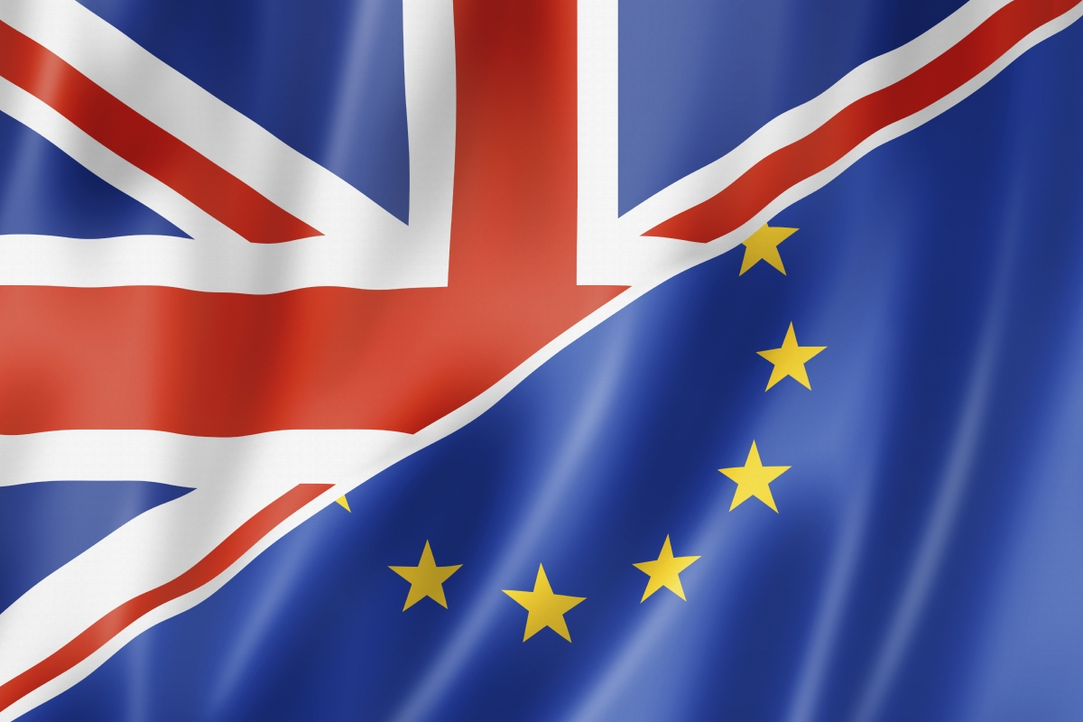 Image result for eu referendum