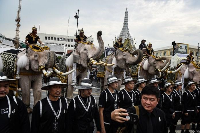 Once elefantes de la antigua capital de Tailandia, Ayutthaya, marcharon por las calles de Bangkok como parte de una procesión dedicada al difunto rey tailandés Bhumibol Adulyadej, quien murió el 13 de octubre   Lillian Suwanrumpha / AFP