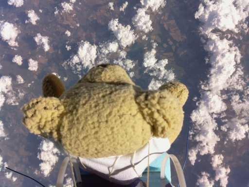 Raspberry Pi Controlled Teddy Bear Beats Felix Baumgartner Space Dive