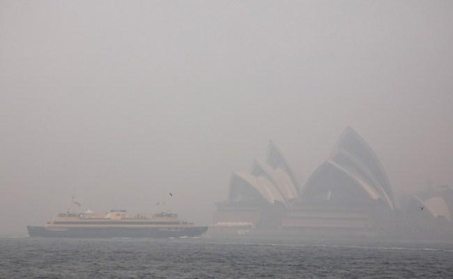 Bushfire Smoke Engulfs Australia S Biggest City Sydney