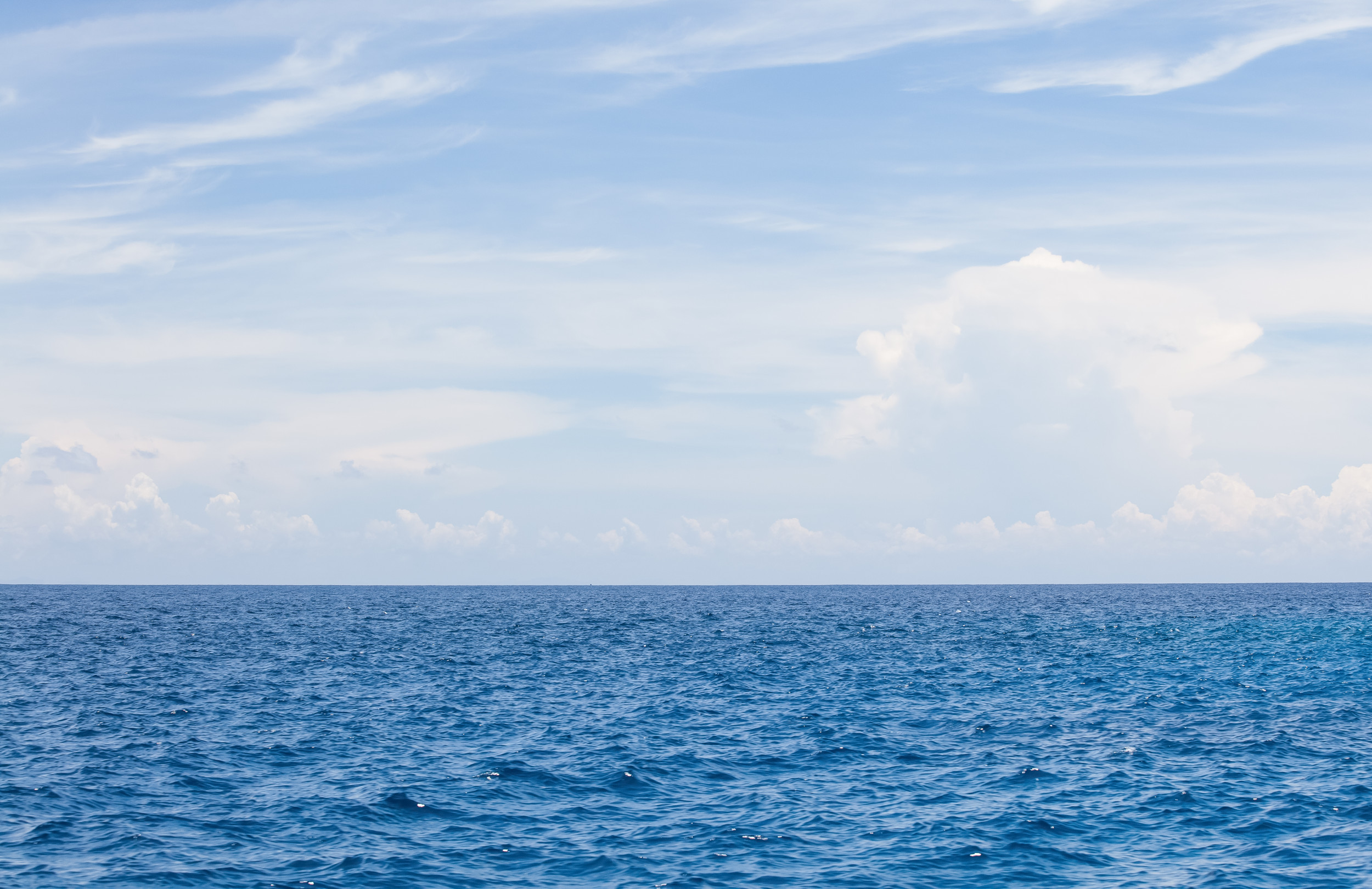 Mystery Stretch Of The Pacific Ocean Is Not Warming Like