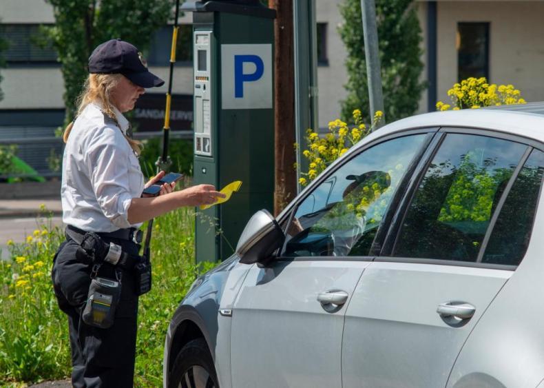 #100. Parking Enforcement Workers