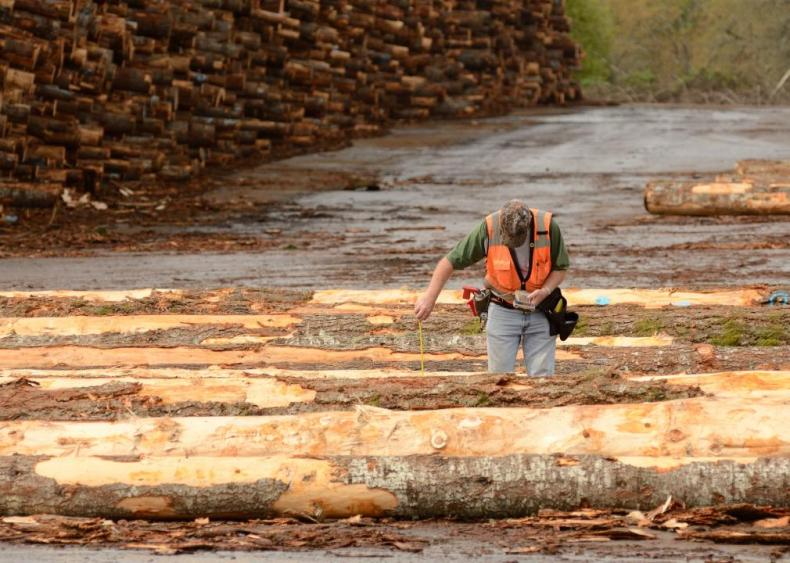 #36. Log Graders and Scalers