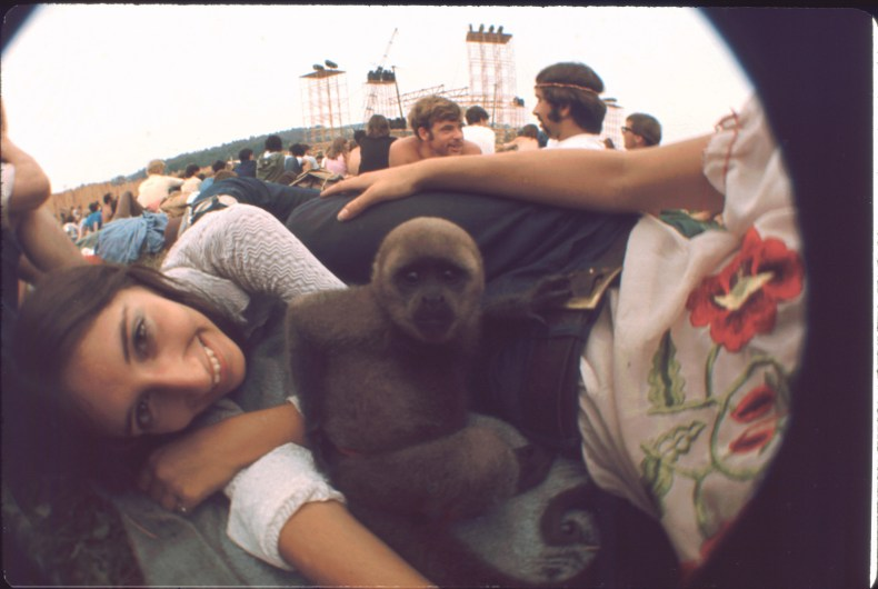 The Woodstock Monkey With Friends