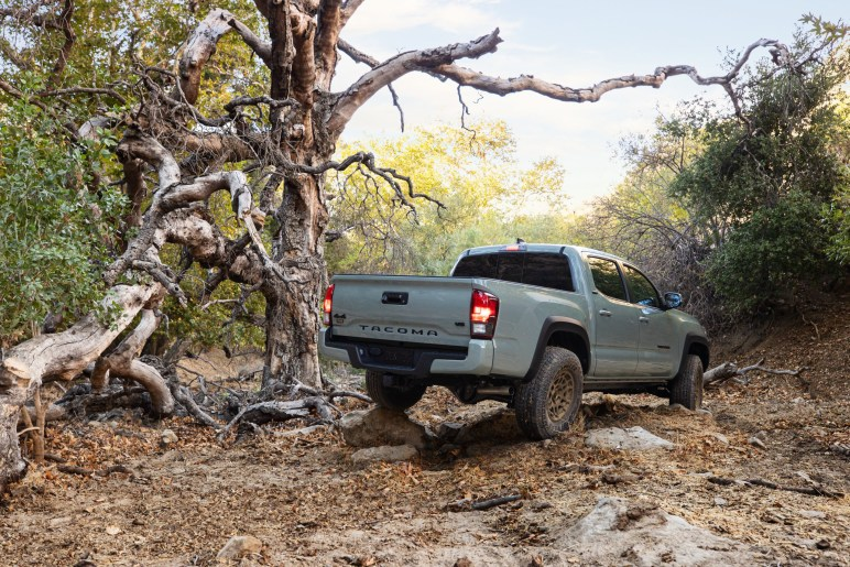 2022 Toyota Tacoma Trail Edition rear rocks