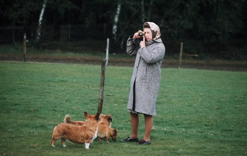 Queen Elizabeth Photographing Corgis