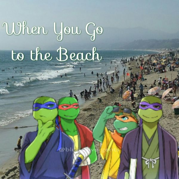 Tmnt Don Beach - Year of Clean Water