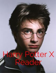 Harry Potter Fred X Reader - Year of Clean Water