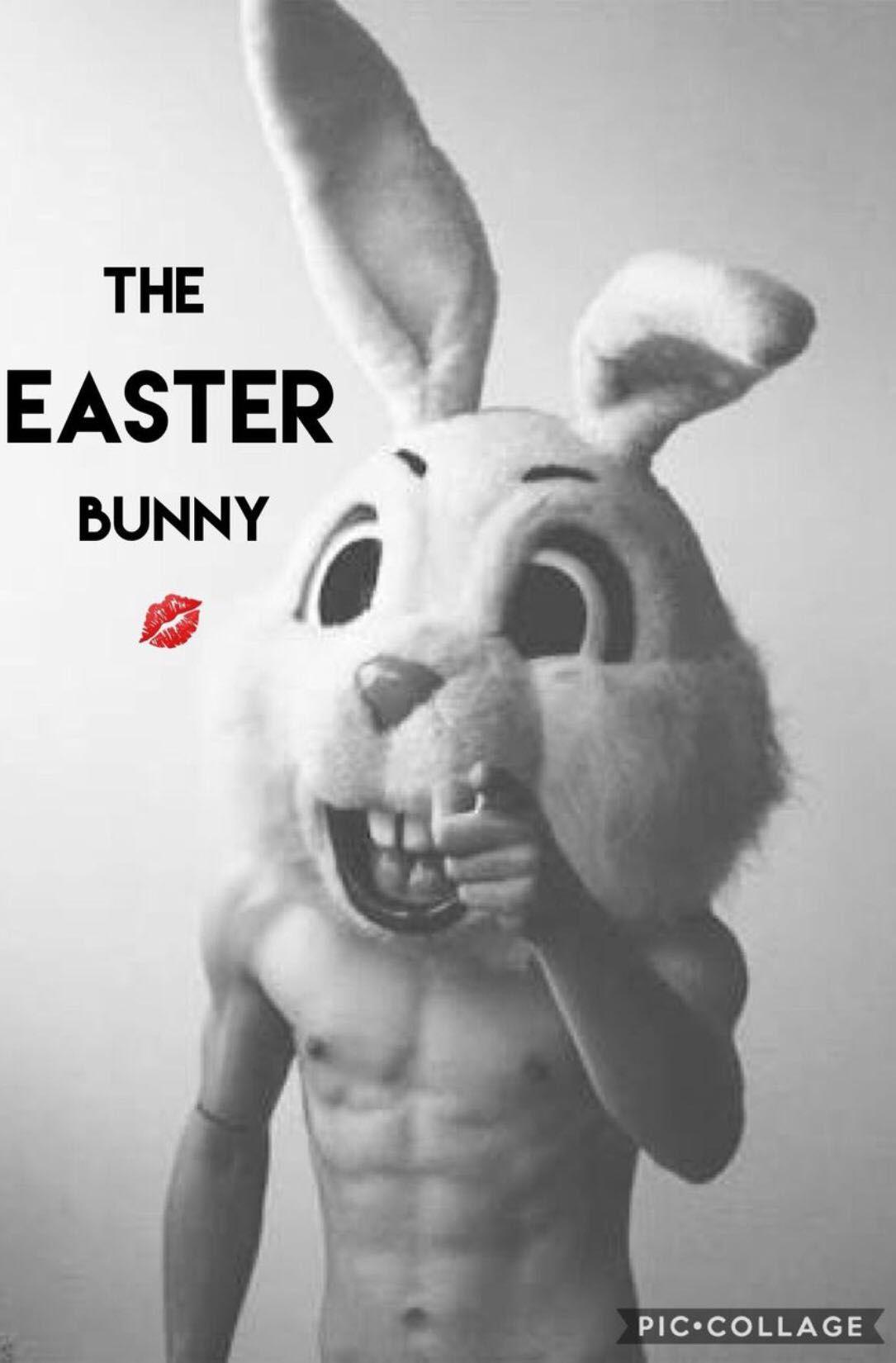 Dirty Easter Bunny : dirty, easter, bunny, Easter, Bunny, Wattpad