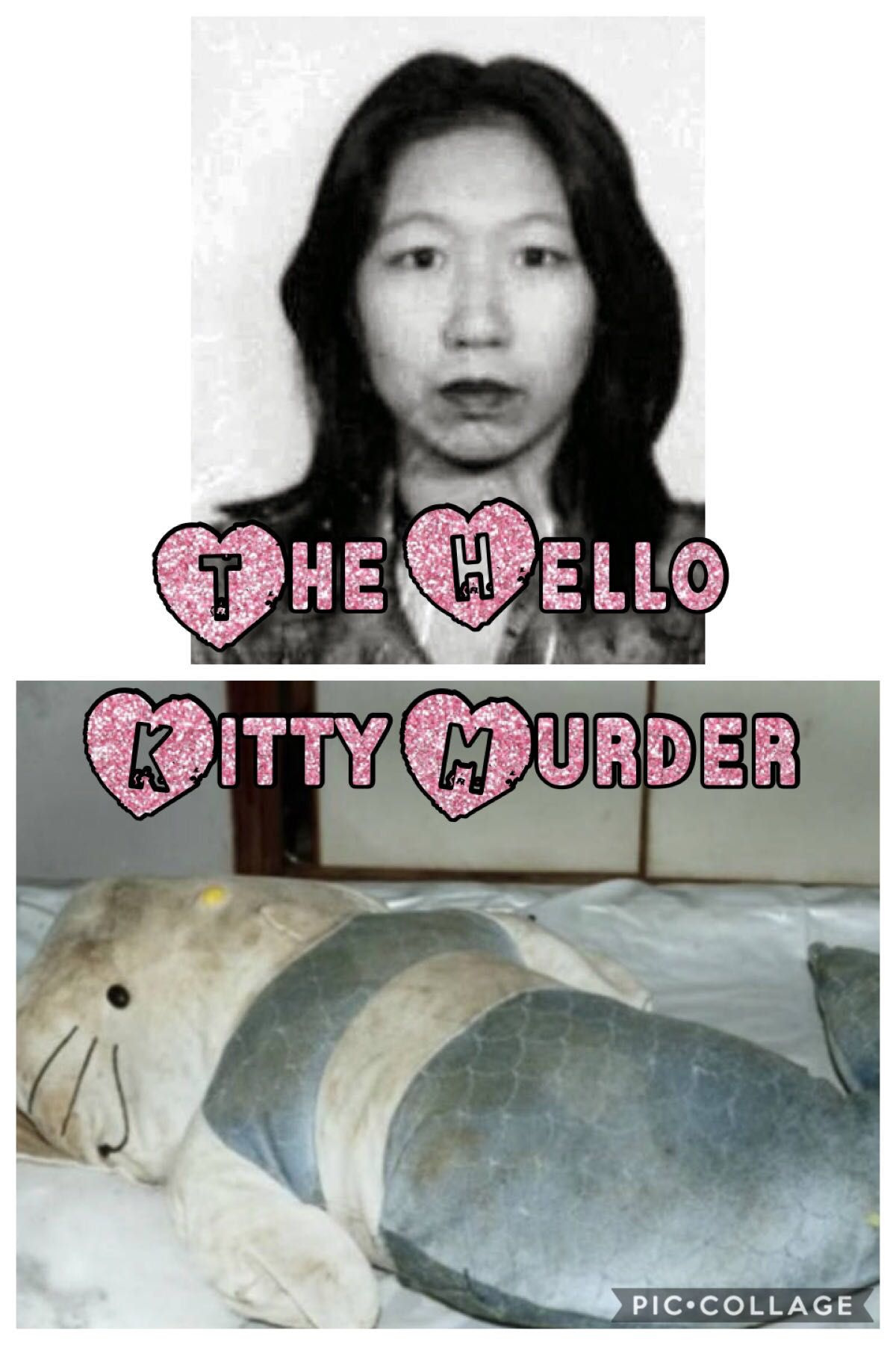 The Hello Kitty Murder Photos : hello, kitty, murder, photos, Crime, Cases, Hello, Kitty, Murder, Wattpad