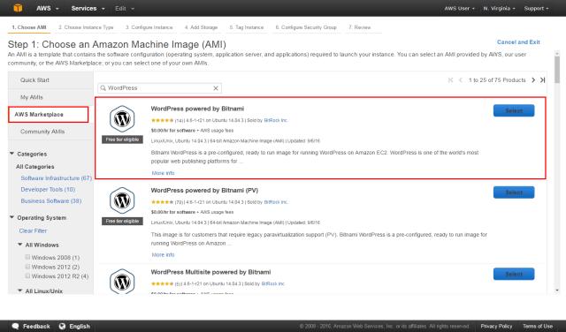 Launch a WordPress Website - AMI