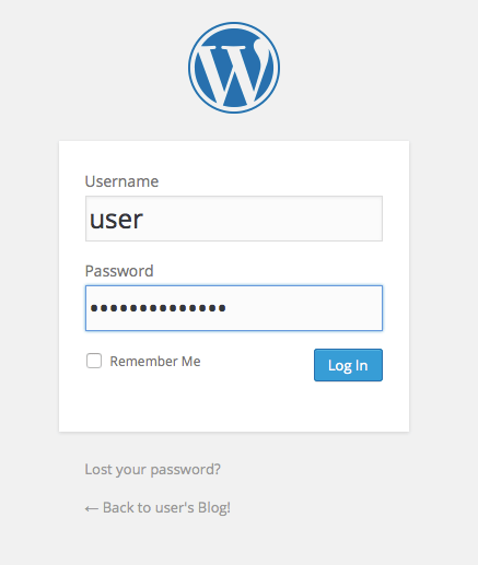 Launch a WordPress Website - Login