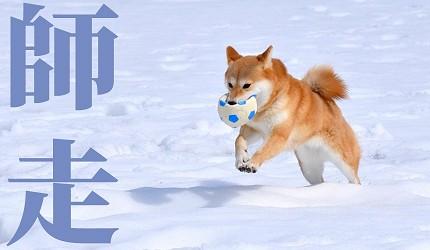 日本12月份圖鑑:唯美的和曆月份別名是怎麼來的?   樂吃購!日本