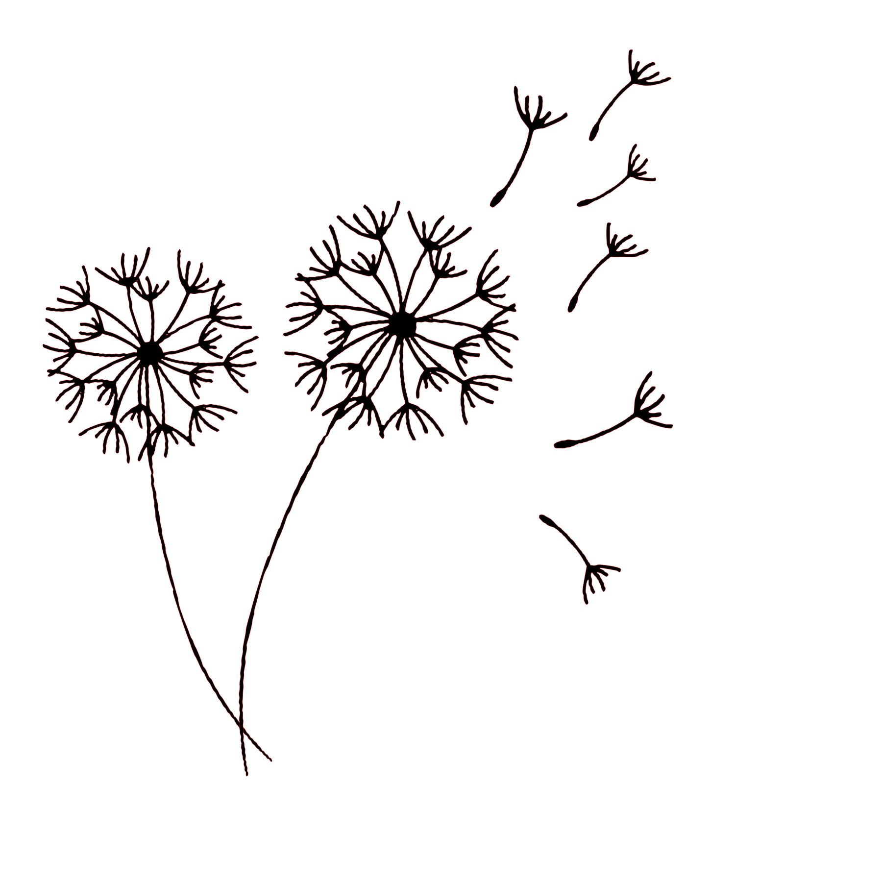 Dandelion SVG · JATDESIGNS · Online Store Powered by Storenvy