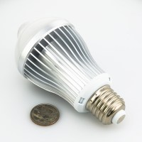 6 Watt LED A19 Globe Bulb with Motion Sensor