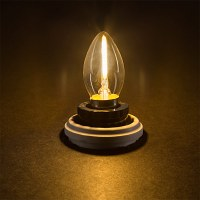 Vintage LED Night Light Bulb