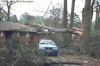 This photo shows the aftermath of an EF0 storm, the classification for the weakest tornado.