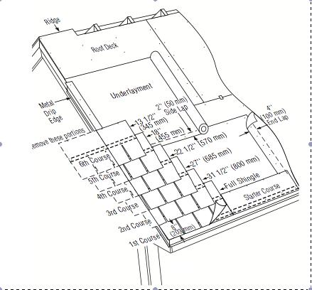 Diagram Shingles Cause Diagram 96 9 73 9 Pro Hansafanprojekt De