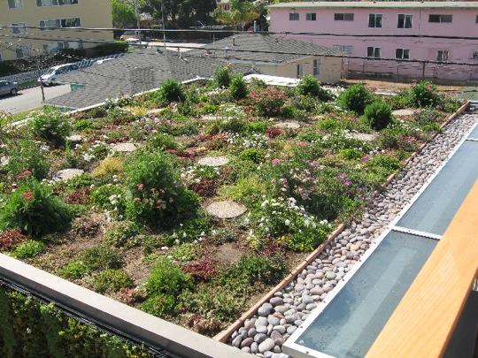 Landscape Design Courses Online