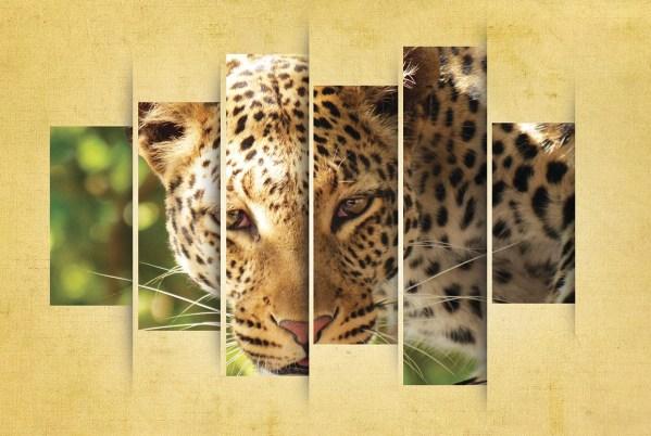 Leopard Display Poster Art - Godserv Design