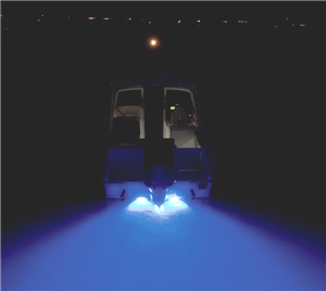 4 types of lights for night fishing