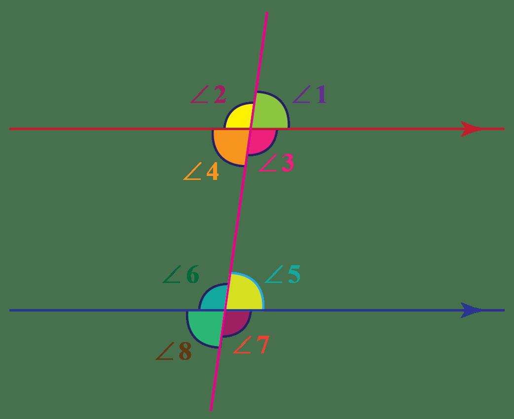 hight resolution of Transversal - Definition