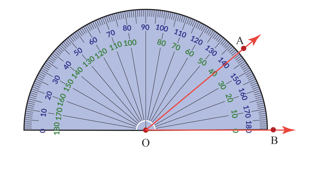 medium resolution of Angles: Types   Acute Angle   Complementary   Obtuse - Cuemath