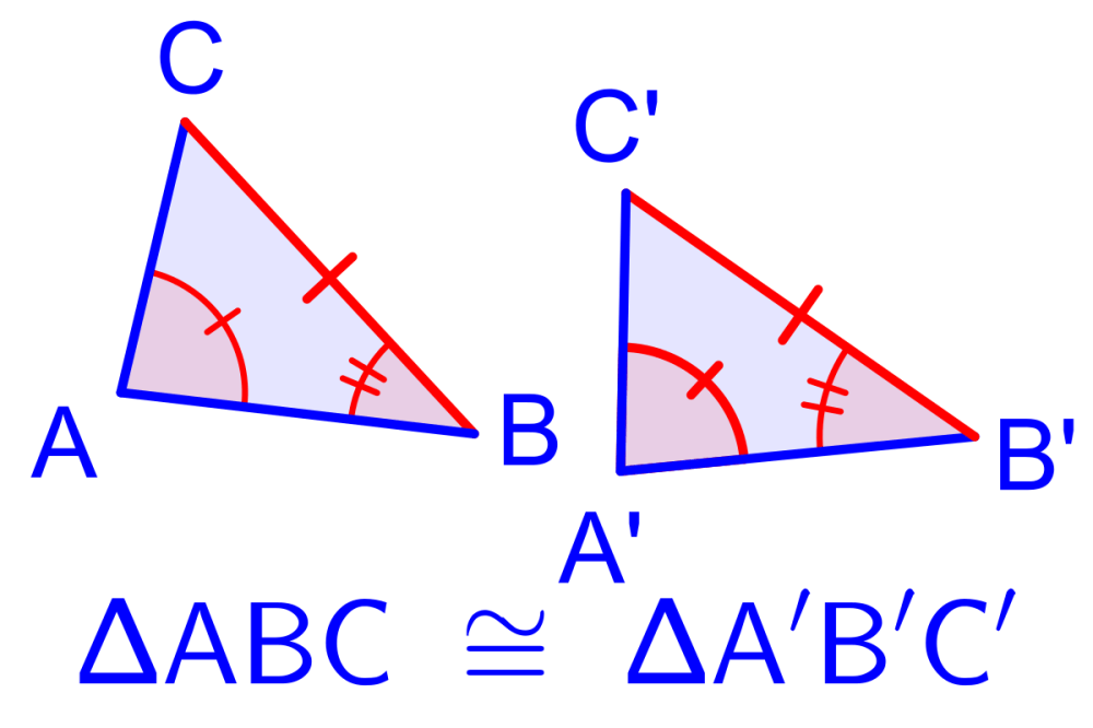 medium resolution of Congruence of Triangles   Definition   Theorems   Examples