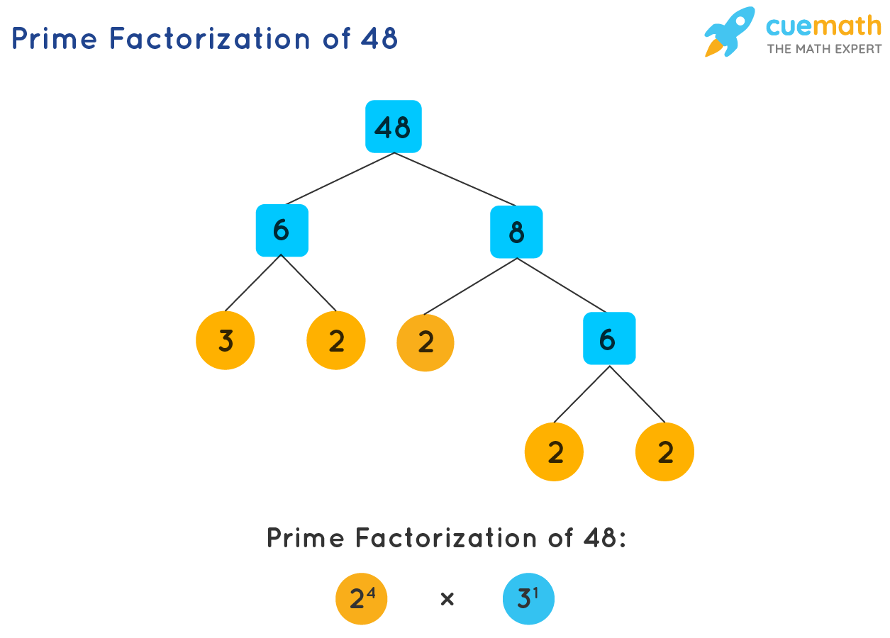 hight resolution of Prime Factorization - How to Find Prime Factorization of Numbers?