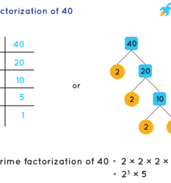 Prime Factorization - How to Find Prime Factorization of Numbers? [ 900 x 1255 Pixel ]