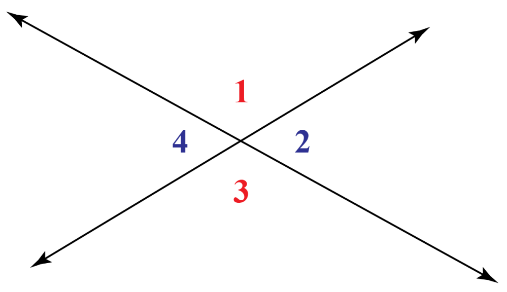 medium resolution of Vertical Angles - Cuemath