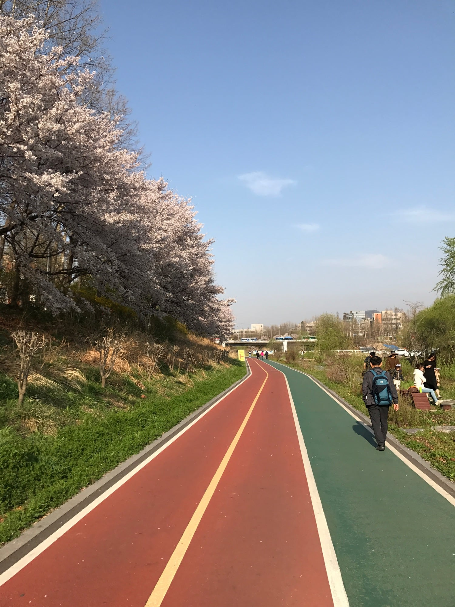 cycling-in-seoul-6