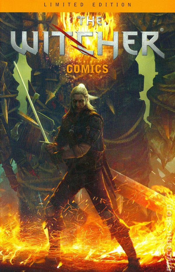 Witcher Comics 2011 comic books