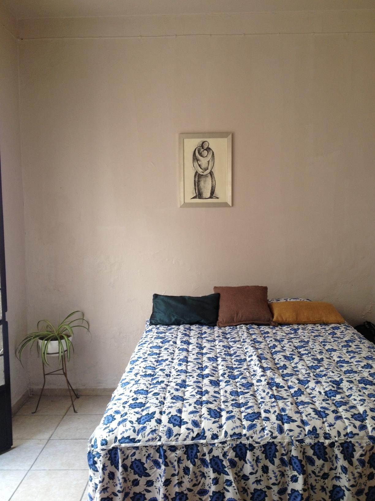 Casas en renta en Guadalajara Jalisco
