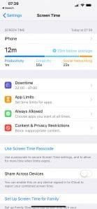 Your Screen Time broken down into app categories