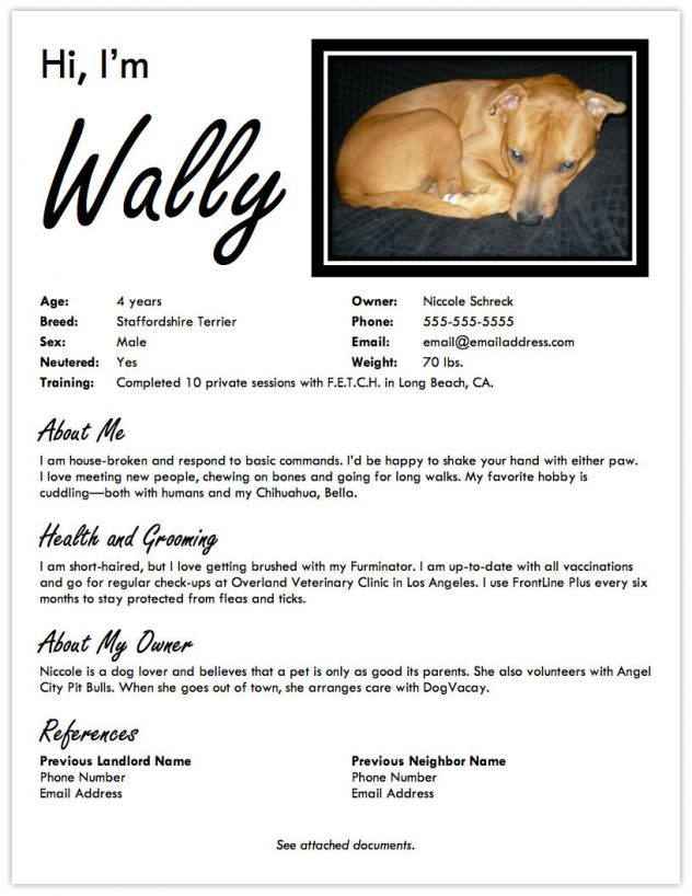 Landing A Dog Friendly Apartment Create A Pet Resume