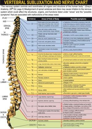 Vertebral Subluxation and Nerve Chart on Meducation
