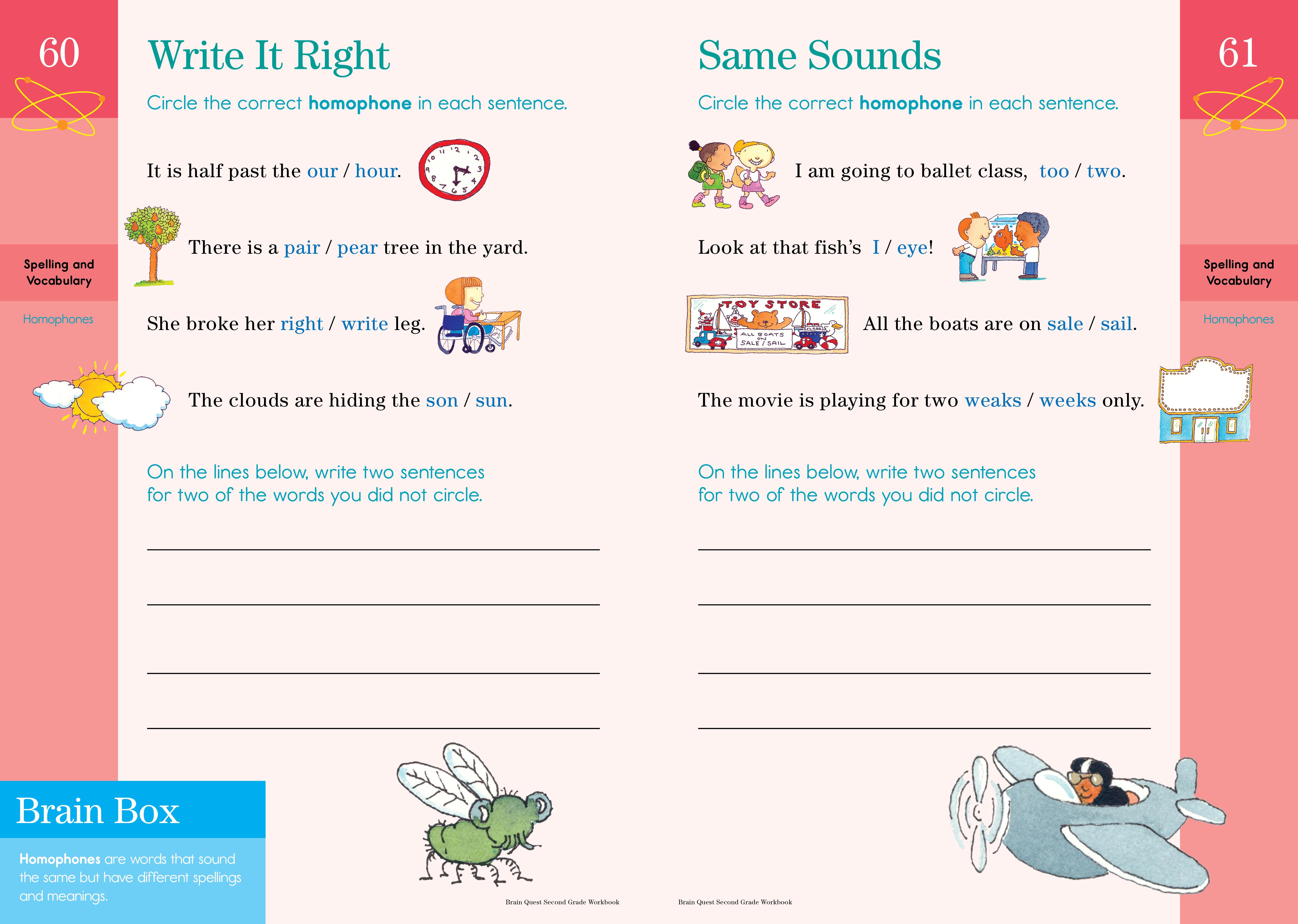 medium resolution of Brain Quest Workbook: 2nd Grade - Workman Publishing