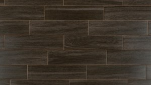 FREE Samples: Salerno Ceramic Tile Harbor Wood Series